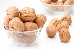 Group of walnuts Stock Image
