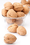 Group of walnuts Stock Images