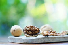 Group of walnut in wooden bowl on wood background, copy space, super food concept. Group of walnuts and a crack nut in wooden bowl on wood background, copy space royalty free stock images