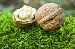 Group of walnuts Stock Photo