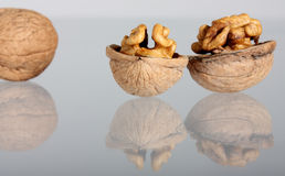 Group of walnuts with reflection Stock Photos