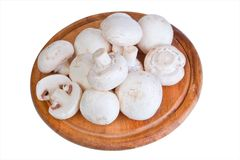 Group of white field mushroom on wood plate. Royalty Free Stock Photos