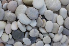 Group of white, grey and black pebbles, one by ony, simplicity stone background. Flat lay texture in daylight stock photography