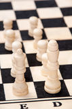 The group of white pieces on the chessboard Royalty Free Stock Photos