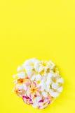 Group White Pink Frangipani Yellow Background Stock Photo