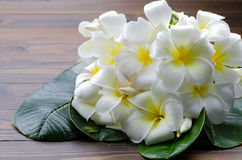 A group of white plumeria flora with green leaf on wooden ground Royalty Free Stock Photos