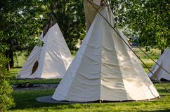 Group of Tipis Standing Among the Trees. Group of White Tipis Standing Among the Trees royalty free stock photography