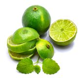 Lime fruit with melissa isolated on white Royalty Free Stock Image