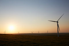 Group Of Wind Turbines In Field At Dusk Stock Image