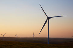 Group Of Wind Turbines In Field At Dusk Royalty Free Stock Photo