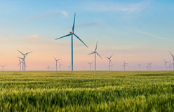 Group of windmills for electric power production in the green field of wheat. Alternative energy sources.Ecologically clean energy sources Stock Photos