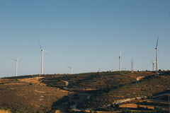 Group of windmills for renewable electric energy production. Near the fields, in nature on the sunset Stock Photography