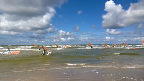 Group of windsurfers in the sea Stock Images