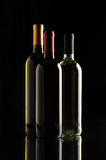 Group of wine bottles Stock Image