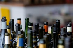 Group of wine bottles in a row. Stock Photography