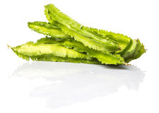 A Group Of Winged Bean Vegetable IX Stock Images