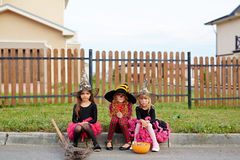 Group of witches Stock Photography