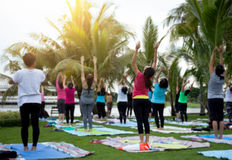Group of woman practicing yoga class in a park with sunlight stock photography