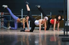 Group of woman working out Royalty Free Stock Photo