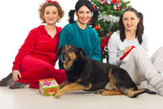 Group of women with dog near Xmas tree Royalty Free Stock Photography