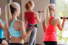 Group of women exercising with dumbbells in gym. Fitness, sport, people and lifestyle concept - group of women exercising with dumbbells in gym Stock Photo