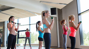 Group of women exercising with dumbbells in gym Stock Photography