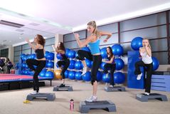 Group of women exercising in the fitness club. royalty free stock photo