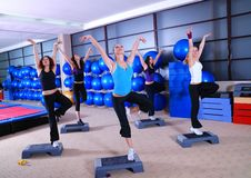 Group of women exercising in the fitness club. Royalty Free Stock Images