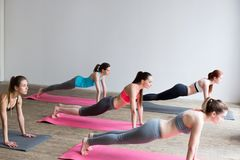Group women on floor of sports gym doing push ups. Stock Photos