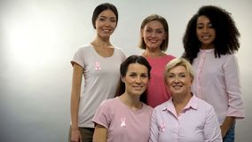 Group of women in pink shirts with breast cancer ribbons looking into camera. Stock photo stock image