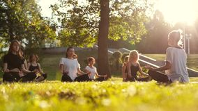 Group of women practice meditate in park on summer sunny morning in slow motion. Group of young women meditate in park on summer sunny morning under guidance of stock video footage
