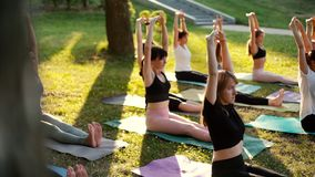 Group of women is practicing yoga and sit with hands up morning in park. Group of young women is practicing yoga and sit with hands up morning in park while stock video footage