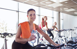 Group of women riding on exercise bike in gym Royalty Free Stock Images