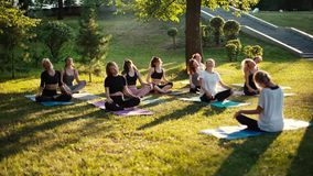 Group of women is stretching necks in park on summer sunny morning. Under guidance of coach in slow motion. Group of people outdoors is sitting on yoga mat in stock video