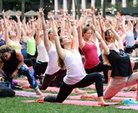 Large group of people participate in a free outdoor yoga class in Bryant Park, New York City. People participate in an outdoor Yoga class in Bryant Park, New royalty free stock image