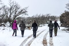 Group of women on back taking a walk in the snow royalty free stock images