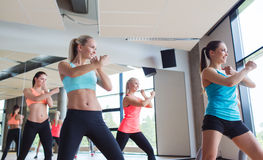 Group of women working out in gym Royalty Free Stock Photography
