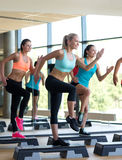 Group of women working out with steppers in gym Royalty Free Stock Images