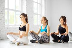 A group of women from yoga is engaged in training in the gym. The concept of sports, healthy lifestyle, fitness, stretching.  royalty free stock photography
