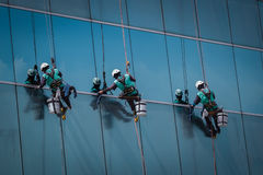 Group of workers cleaning windows service on high rise building. For any use royalty free stock images