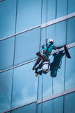 Group of workers cleaning windows service on high rise building Royalty Free Stock Images