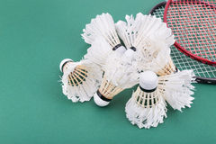 Group of worned out badminton shuttlecock with rackets on court Stock Image