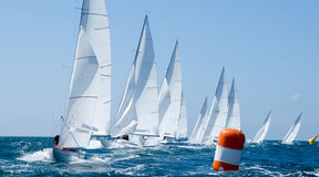 Group of yacht in regatta. Group of dragon yacht in regatta near a  buoy Royalty Free Stock Image