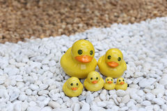 Group of yellow duck statue on white and brown rock garden Stock Photos