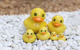 Group of yellow duck statue on white and brown rock garden Stock Photography