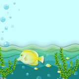 A group of yellow fishes under the sea Royalty Free Stock Image