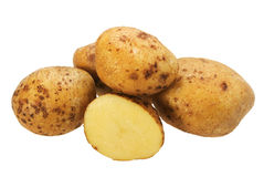 Group of yellow potatos. Stock Image