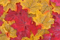 Group of yellow and red fake fall leaves. A group of artificial fabric fall leaves with printed design Royalty Free Stock Photos