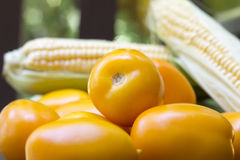 Group of yellow ripe tomatoes closeup Stock Images
