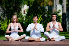 Group Yoga Royalty Free Stock Photography